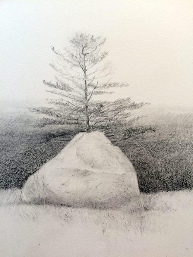 Kateri-TreeOnRock